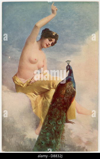 Juno And The Peacock - Stock Image