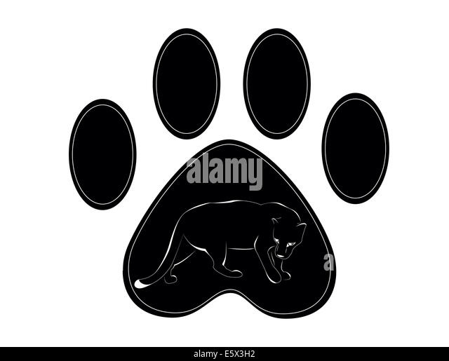 black white panther tail vector stock photos amp black white
