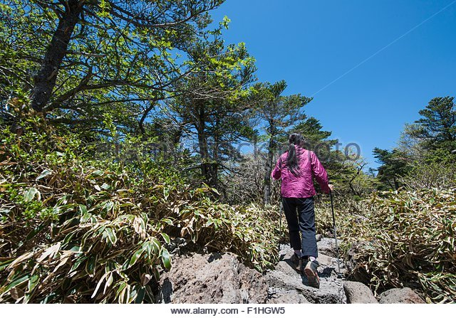 Hiker hiking up rocky trail to Hallasan the highest mountain in Korea,  Jeju Island, South Korea - Stock Image