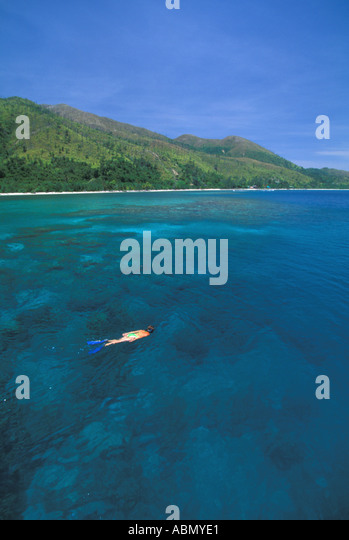Honduras vertical Bay Islands Guanaja woman snorkeler over reef far from shore Central America - Stock Image