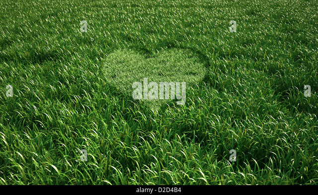 Heart-shaped grass computer artwork - Stock-Bilder