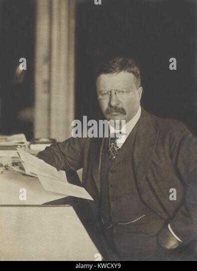 presidency of theodore roosevelt essay President theodore roosevelt resources biography, speeches, photographs, and other information about teddy roosevelt.