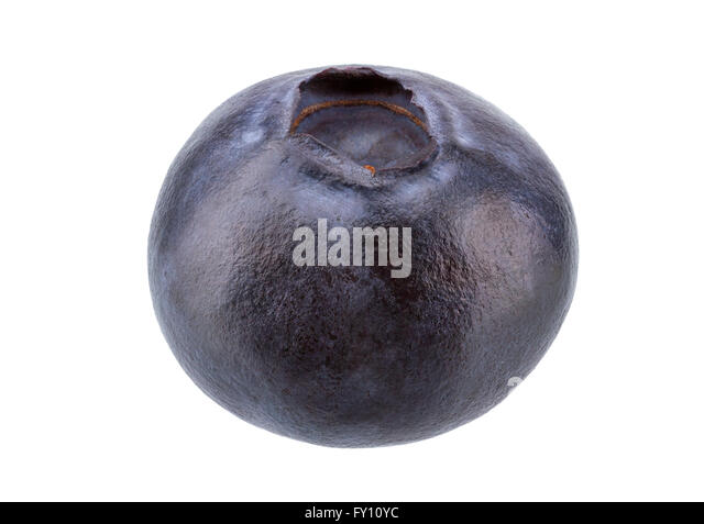 Fresh Blueberry isolated on white background with clipping path. - Stock Image