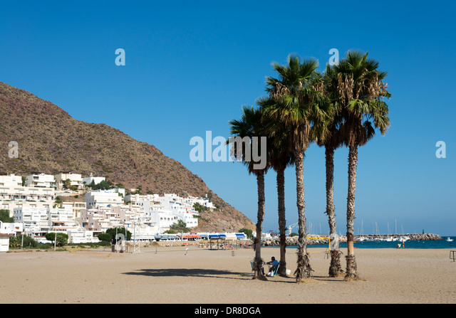 Palm trees on the beach at San Jose, Cabo de Gata-Nijar, Andalusia, Spain - Stock Image