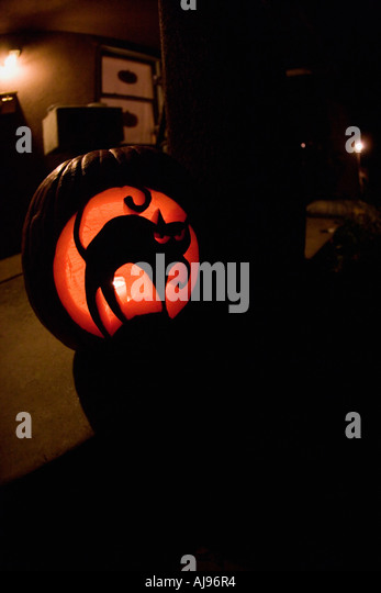 Illuminated Jack O Lantern with carving of black cat - Stock-Bilder