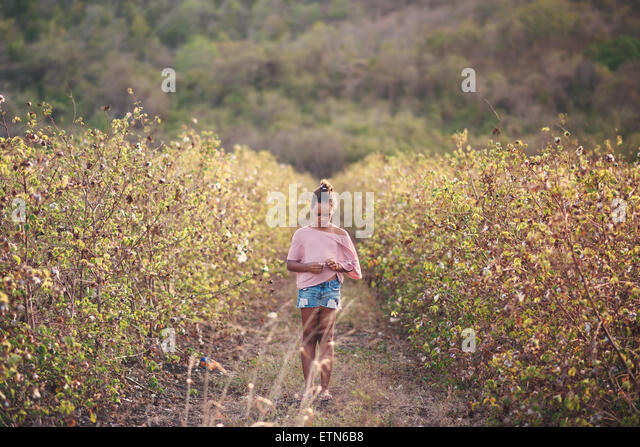 Girl walking through a cotton field, Barbados - Stock Image