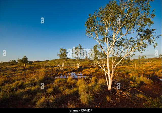 Landcape Pilbara Western Australia - Stock-Bilder