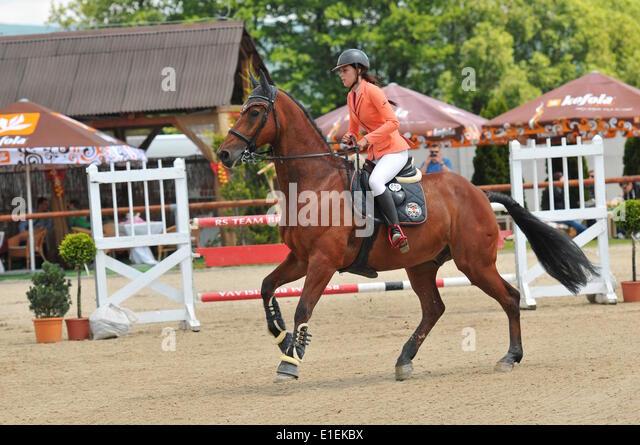 Bratislava-Zahorska Bystrica, Slovakia. 1st June 2014.  Gabriela Radova (SVK) rides on Caitano. A three day tournament - Stock Image