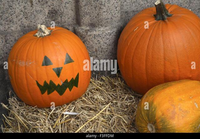 Vegetable ; myth pumpkin All Saints Eve ; Copenhagen ; Denmark ; Scandinavian - Stock Image