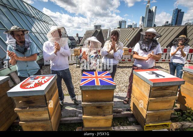 Frankfurt am Main, Germany. 19th August, 2017. The beekeepers Piotr Pilasiewicz (Poland, L-R), Robert Jabulowski - Stock Image