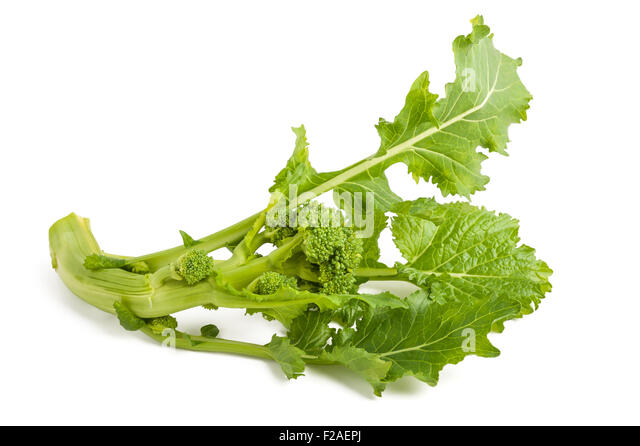 Fresh turnip greens isolated on white background - Stock Image
