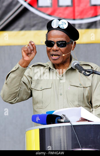 Chief Mangosuthu Buthelezi Net Worth