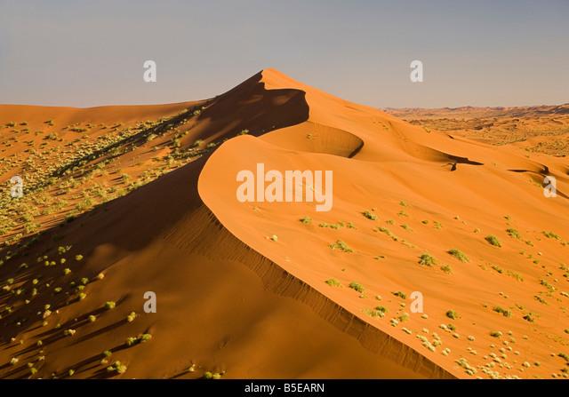 Africa, Namibia, Namib Desert and Desert Plants - Stock Image