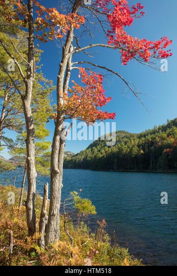 Autumn colours at Grace Lake, Killarney Provincial Park, Ontario, Canada - Stock-Bilder