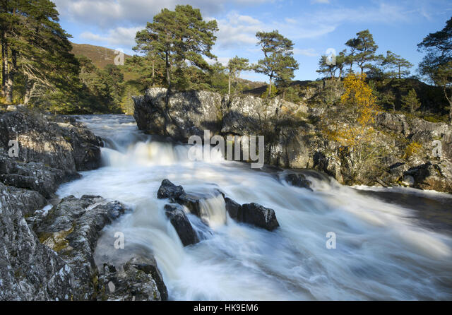 Birch (Betula pendula) and Scots Pine (Pinus sylvestris) forest around River Strathfarrar, Highlands, Scotland - Stock-Bilder
