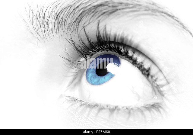 Females blue eye close up - Stock Image