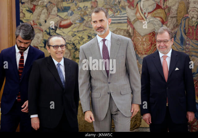 Madrid, Spain. 24th July, 2017. King Felipe VI of Spain during a audience with the Executive Commission of the Information - Stock Image