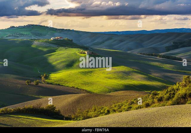 Fantastic sunny fall field in Italy, tuscany landscape. - Stock Image