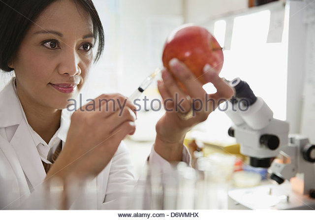 Mature female scientist extracting liquid from apple in laboratory - Stock Image