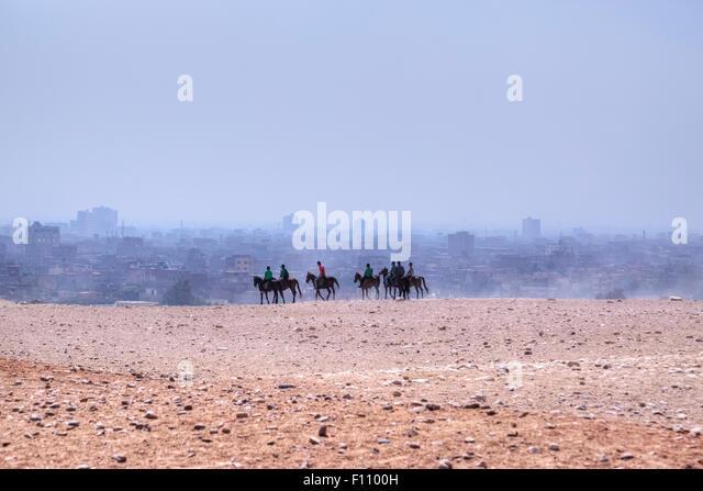 horse riding in the desert of Cairo, Egypt, Africa - Stock Image
