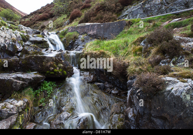 Flowing Stream Flower Stock Photos & Flowing Stream Flower ...