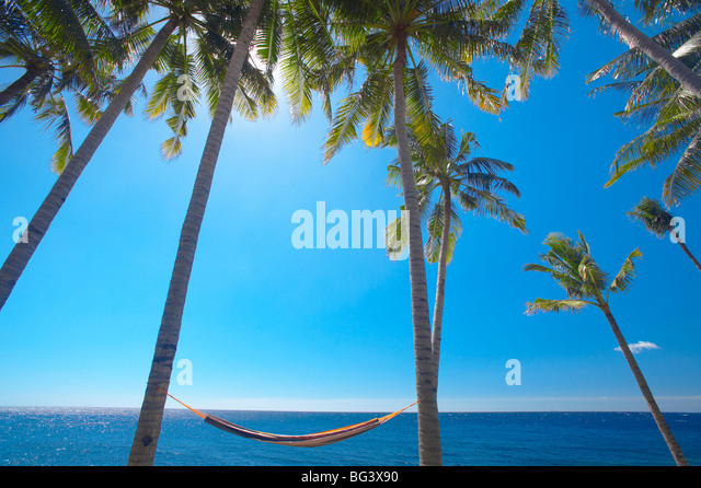 Hammock between palm trees on beach, Bali, Indonesia, Southeast Asia, Asia - Stock Image