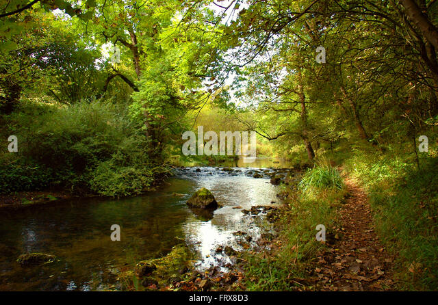 Peaceful riverside walk in Millers Dale, near Tideswell, Derbyshire - Stock Image