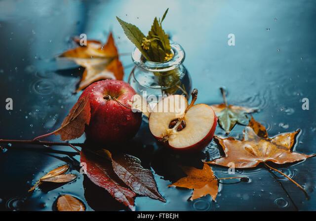 Autumn rain and apples - Stock Image