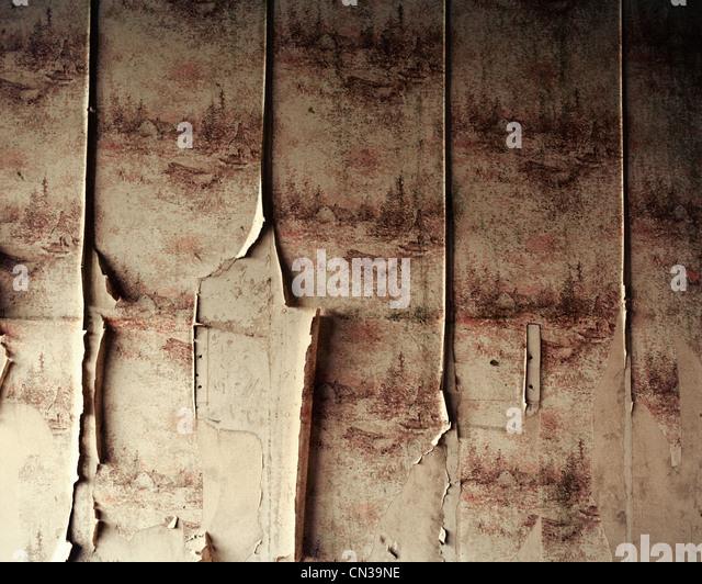 Peeling wallpaper - Stock Image
