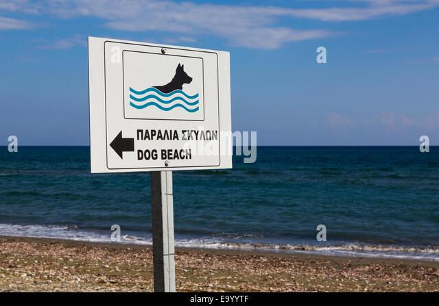 Dedicated dog swimming area sign, Kiti Pervolia Larnaca Cyprus. - Stock Image