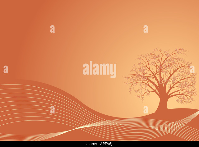 vector autumn tree design - Stock Image