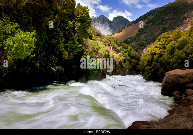 Hi water flow in spring on South Fork Kings River. Kings Canyon National Park, California - Stock Image