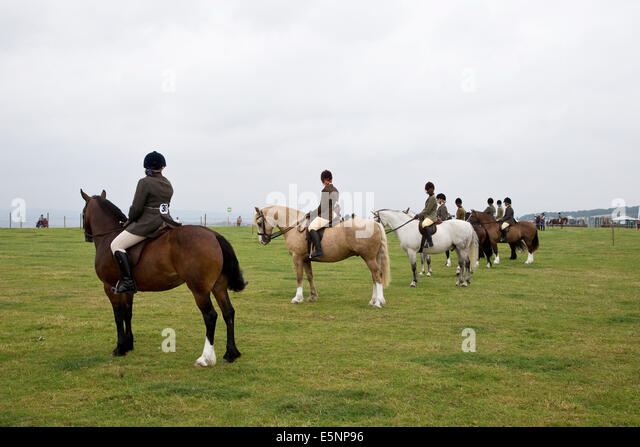 Competitors in a horse handling class line up in the show ring - Stock Image