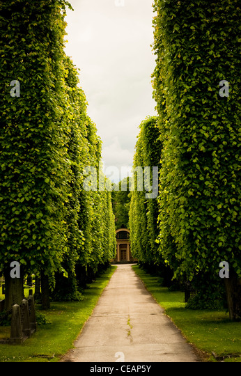Alley on Cemetary, Sweden - Stock Image