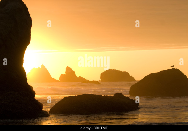 Sea stacks in the Pacific Ocean at Bandon State Park Bandon Oregon - Stock-Bilder