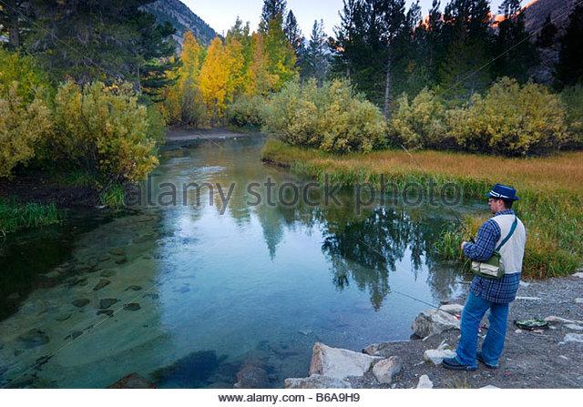 Trout creek canyon stock photos trout creek canyon stock for Bishop creek fishing