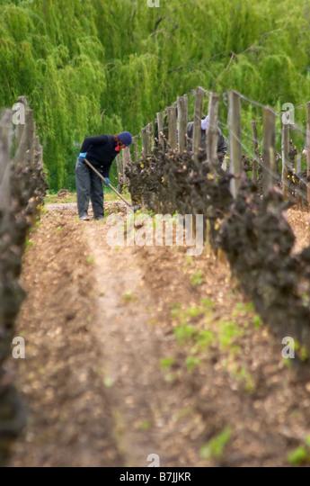 Hoe soil stock photos hoe soil stock images alamy for The soil 02joy