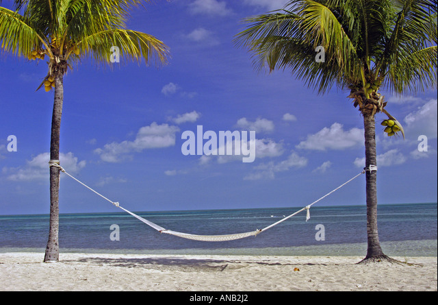 Tropics empty hammock on deserted beach - Stock Image