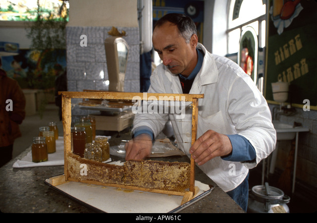 Moldova Eastern Europe Kishinev covered market honey vendor - Stock Image