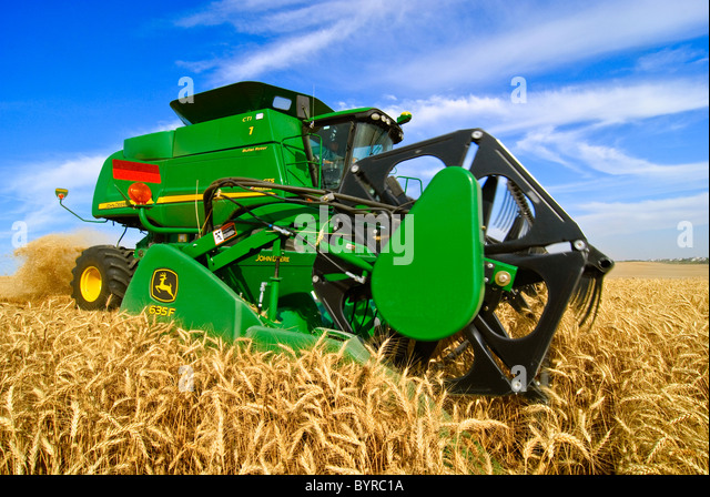 Agriculture - Close up of a John Deere combine harvesting wheat in the Palouse region / near Pullman, Washington, - Stock Image