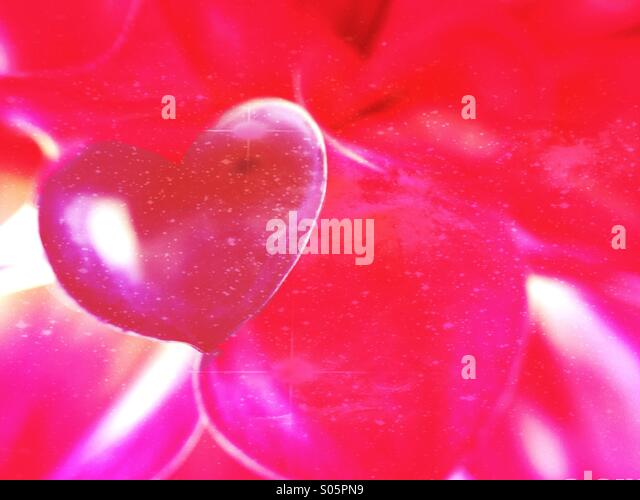 Close up of petals in the shape of a love heart - Stock Image