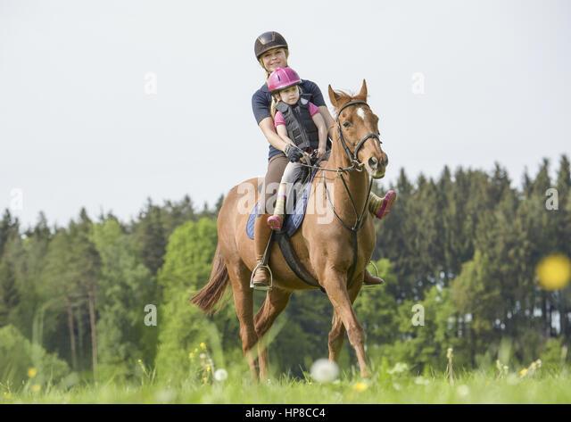 Partnersuche mit hund und pferd - Find Me A Woman