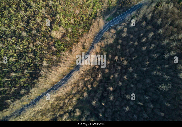 Aerial view of the Italian wild forest at sunset - Stock Image