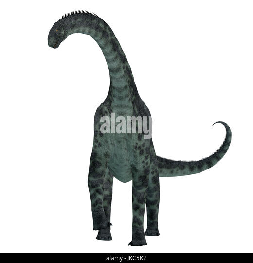 Cetiosaurus was a herbivorous sauropod dinosaur that lived in Morocco, Africa in the Jurassic Period. - Stock Image
