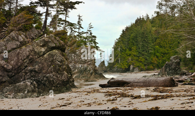 Brady's Beach on the southwest coast of Vancouver Island, British Columbia, Canada - Stock-Bilder