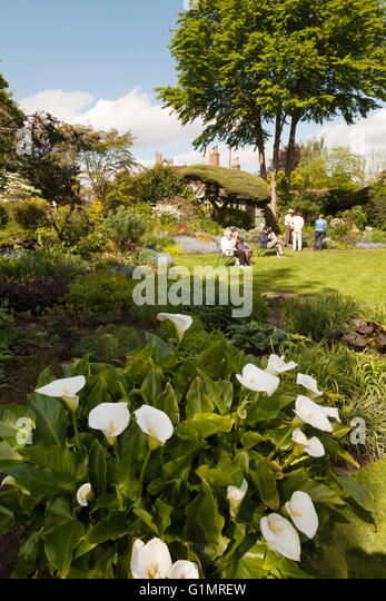 The Mill House garden, Mill Street, Warwick, Warwickshire England UK - Stock Image
