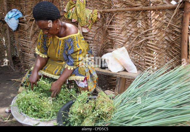 Herbal medicine, Lome, Togo, West Africa, Africa - Stock Image