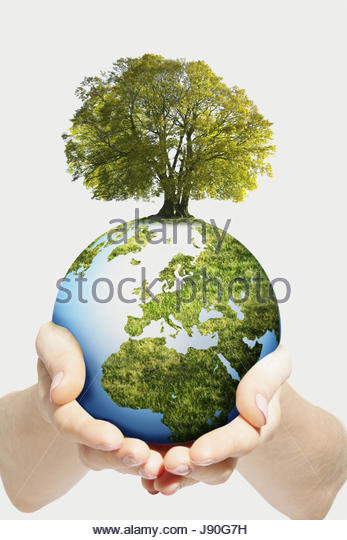 Environmental Concept As Hands Hold Globe With Growing Tree - Stock-Bilder