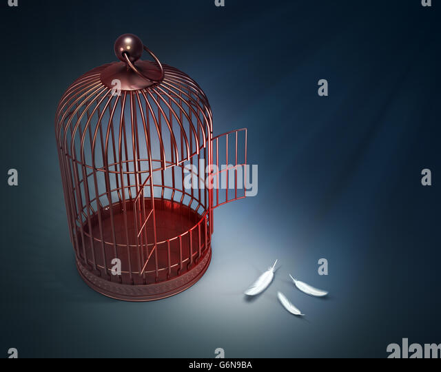 An open bird cage with feathers - freedom concept illustration - Stock-Bilder