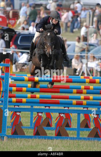 At many shows around the U.K during the summer months, show jumping attracts both novice and experienced show jumpers. - Stock Image